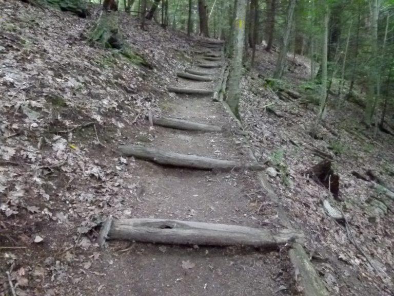 Rough-cut steps up the ridge.