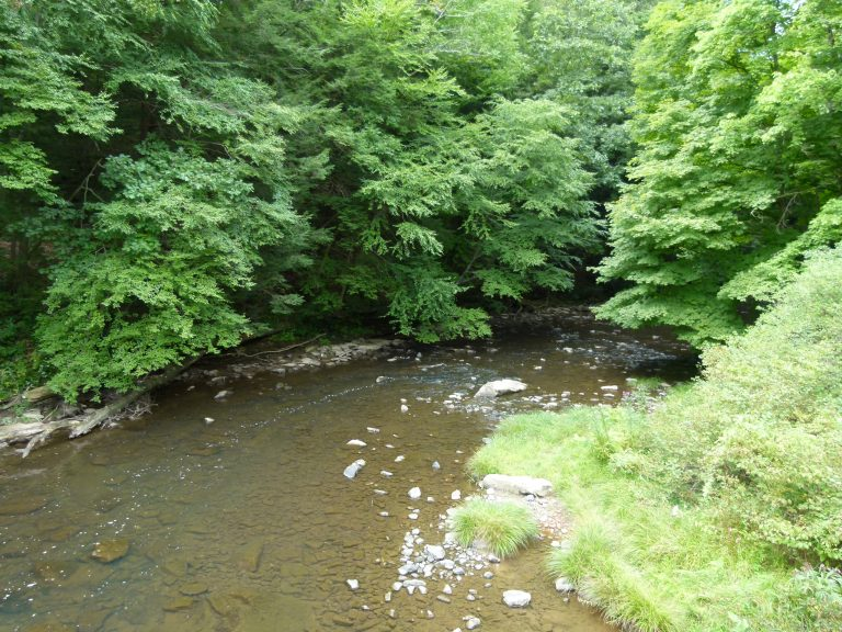 Laurel Hill Creek widens as it approaches the bridge near the Hemlock Trail trailhead.
