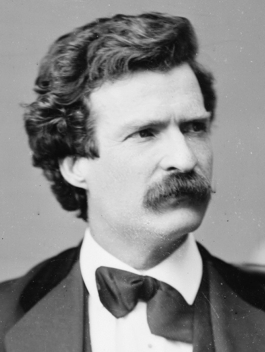"""Ain't we got all the fools in town on our side? And ain't that a big enough majority?""—Mark Twain (in ""Huckleberry Finn"")."