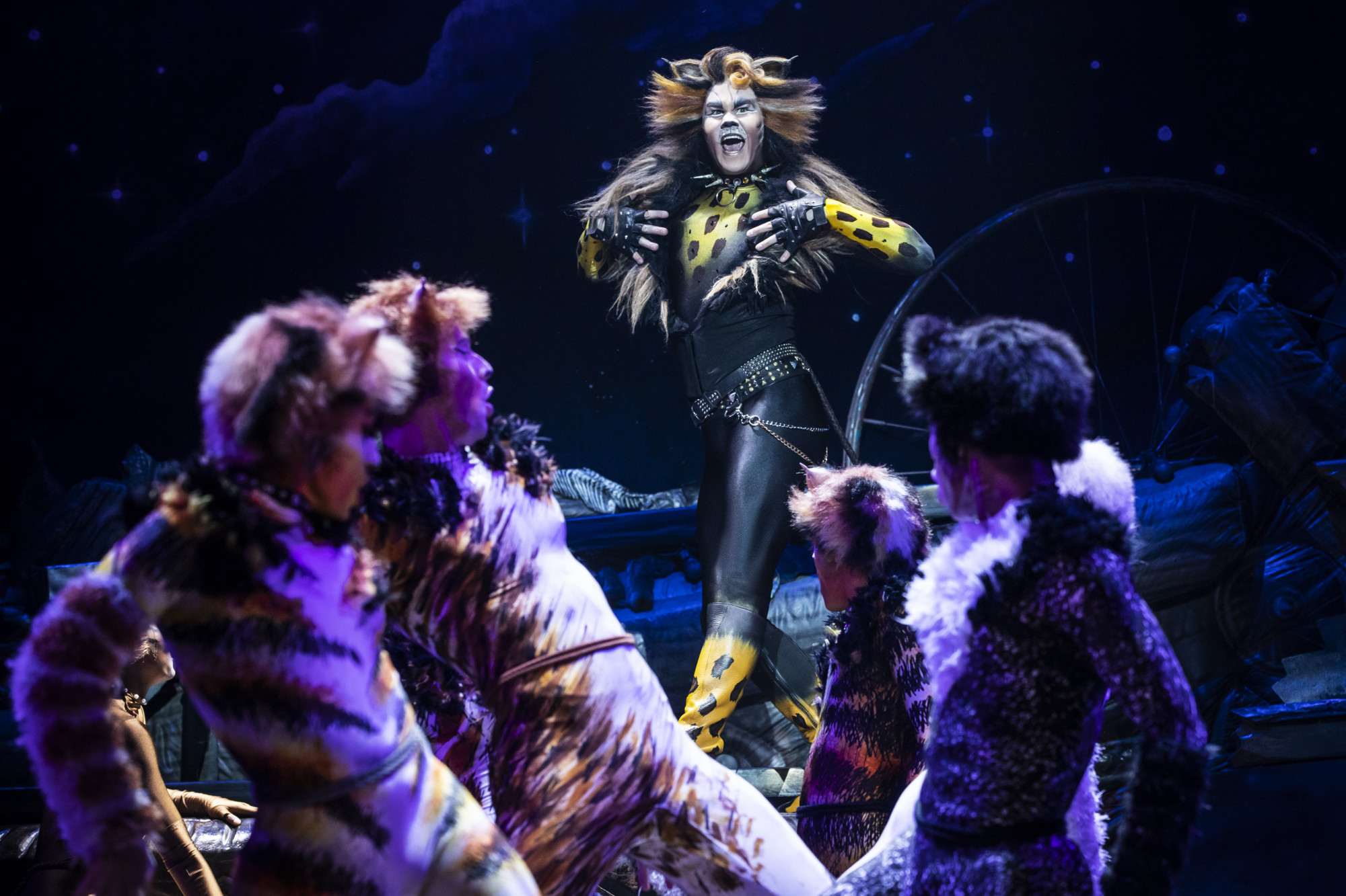 Before March comes in like a lion, 'Cats' comes to Pittsburgh in February. The touring production is among a cavalcade of musicals during the month. (photo: Matthew Murphy)