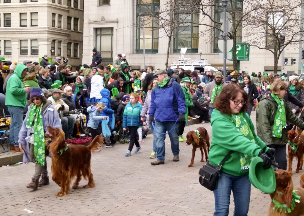 St. Patrik's Day Parade 2019-026
