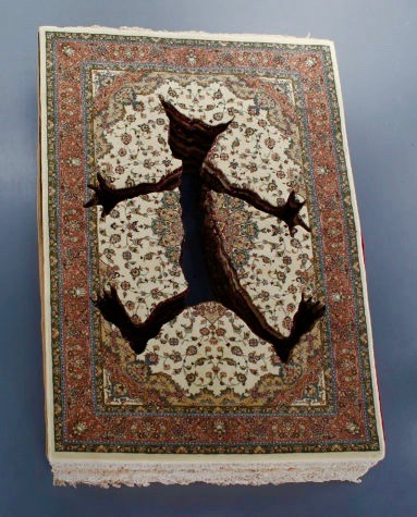 A crazy American cat penetrates Persian carpets in 'Crash' (2011).